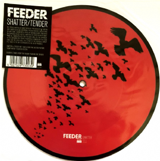 "Feeder - Shatter/Tender (7"") (Picture Disc) (EX/VG)"